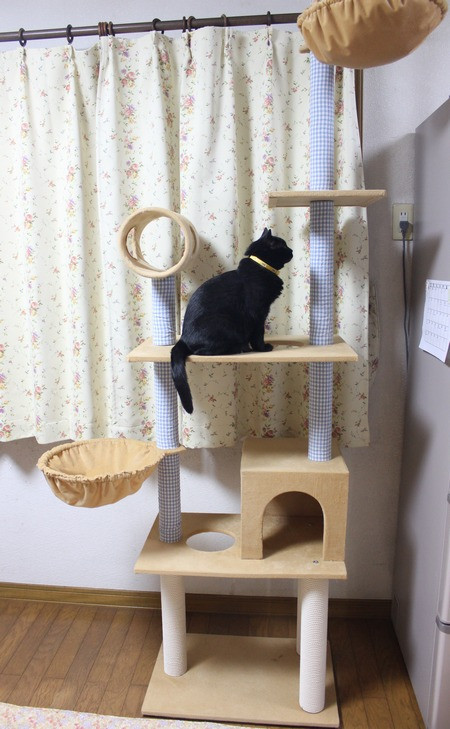 Cattower15